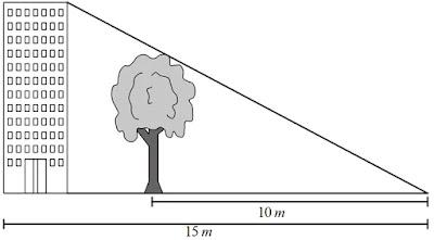 Sebuah pohon berada di depan gedung mempunyai tinggi 8 m. Pada saat yang sama bayangan gedung berimpit dengan bayangan pohon seperti tampak pada gambar di bawah ini