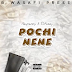 New Audio : Rayvanny Ft. S2kizzy - Pochi Nene | Download Mp3