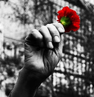 Claveles por la libertad, claveles por el cambio