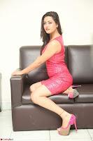 Shipra Gaur in Pink Short Tight Dress ~  Exclusive Poshoot 103.JPG