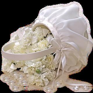 imagenes para bodas,casamiento,png transparente