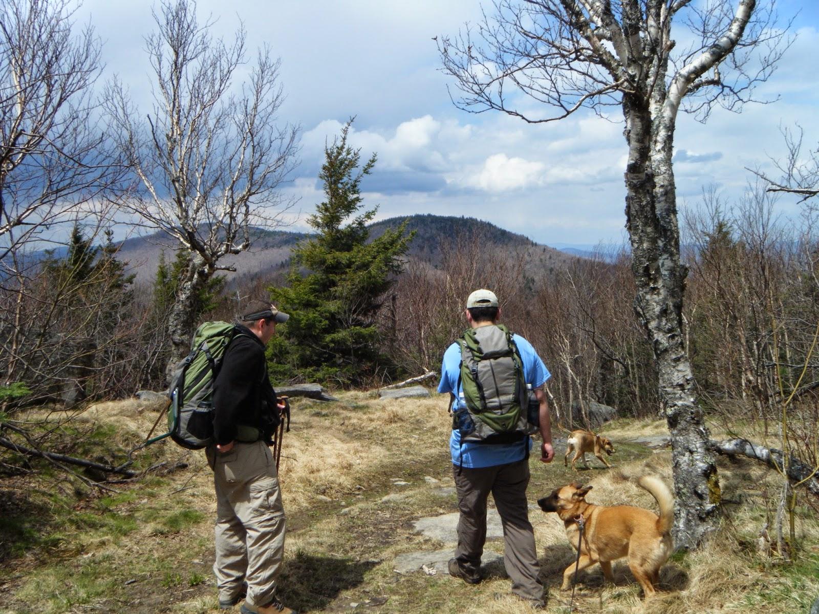 Catskills mountain teen survival story