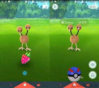 cara mendapatkan pokemon langka