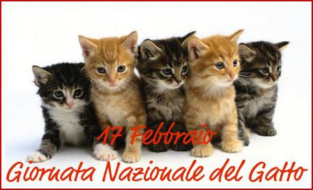 Blog Di Cinzia Bois Oggi è La Festa Nazionale Del Gatto