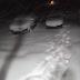 Ξάνθη: Πάνω από 30 πόντους χιόνι στο Δασικό Χωριό - Εντυπωσιακές εικόνες