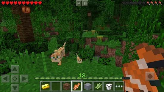 Minecraft - Pocket Edition BETA v1.11.0.8 MOD