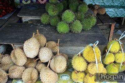 Durian Sabah