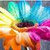 Cantiknya. 5 Bunga yang Indah Ini Tapi Sangat Mematikan
