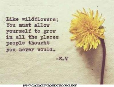 Like wild flower