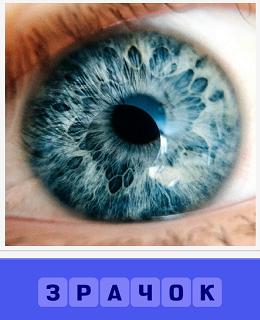 зрачок глаза крупным планом и с отражением