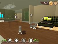 Game Cat Sim Onlone Khusus Untuk Kalian Para Cat Lover.