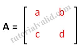 matriks 2x2