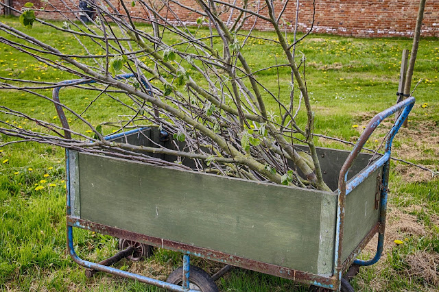 gardening career wheelbarrow
