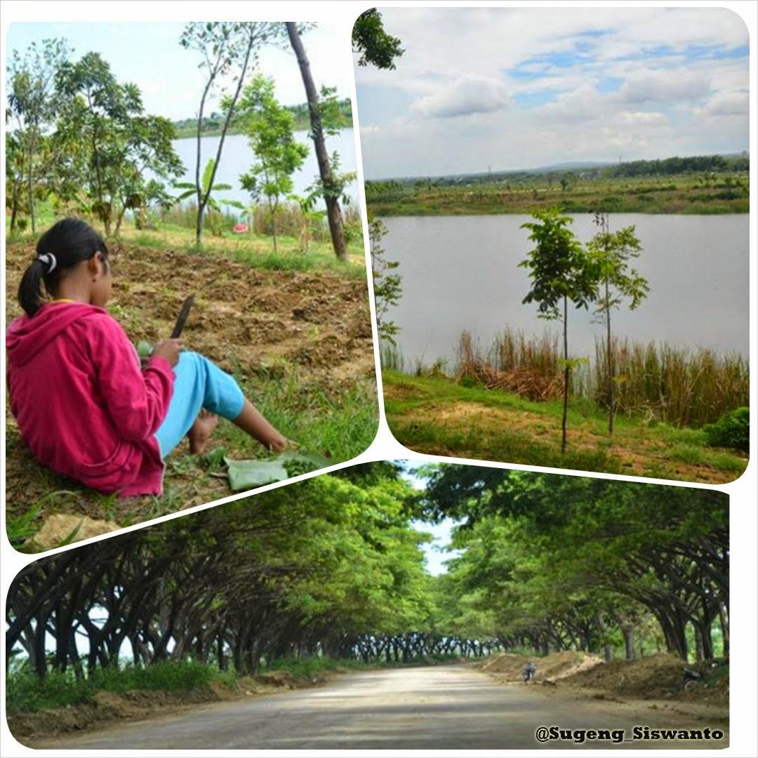 pengelolaan lingkungan tambang pabrik semen indonesia