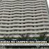 TRAGÉDIA: Pai e filho são encontrados mortos em estacionamento de apart-hotel
