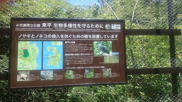 東原自然再生区