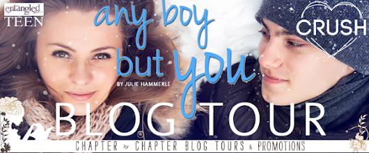 Blog Tour 'Any Boy But You' by Julie Hammerle