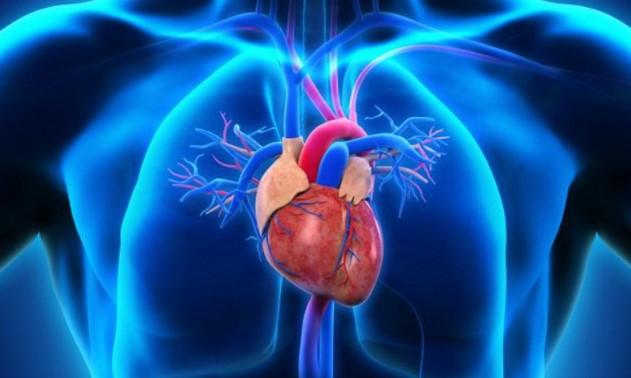 Gejala Penyebab Pencegahan dan Obat Sakit Jantung sejak dini