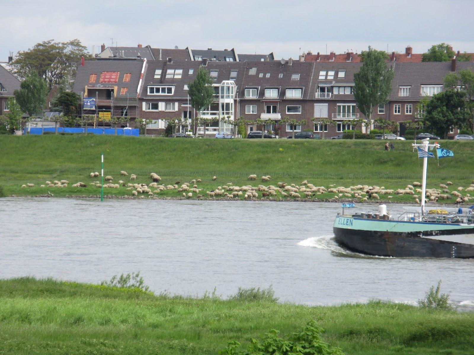 kostenloses Monheim am Rhein