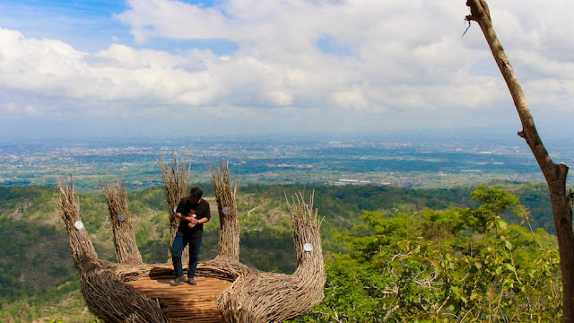 spot foto instagramable hutan pinus pengger
