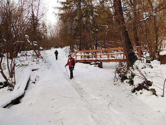 Tutaj potok można przejść po lodzie.