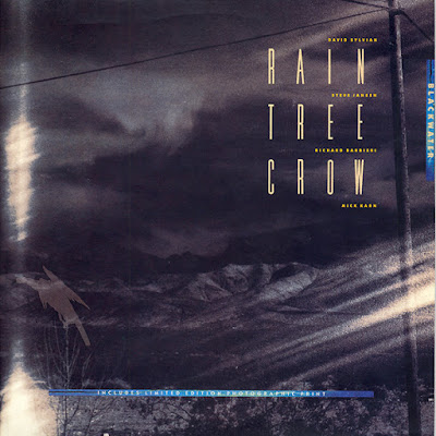 "Rain Tree Crow - ""Blackwater"" b/w ""Red Earth"" & ""I Drink To Forget"" 12"" Vinyl, 45 rpm, Limited Edition, 1991 (Virgin)"
