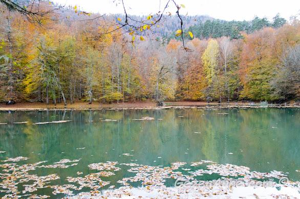 Nazlıgöl ve onu çevreleyen rengarenk ormanlar, Yedigöller Milli Parkı Bolu