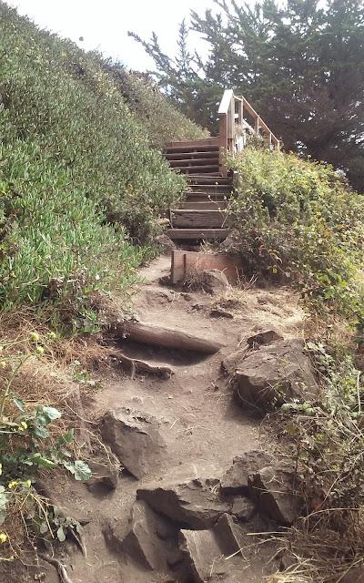 Ragged Point Trail