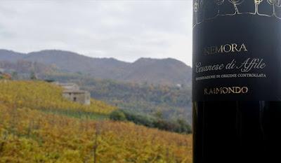 cesanese affile vino raimondo cantina