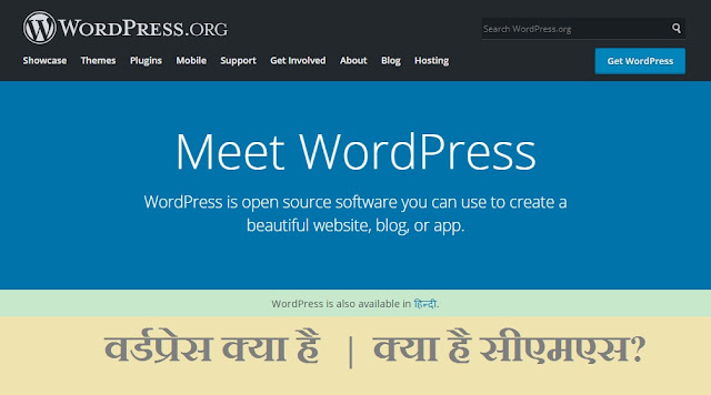 wordpress kya hai hindi