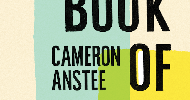 Rob Mclennans Blog Cameron Anstee Book Of Annotations