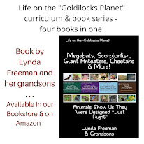Life on the Goldilocks Planet