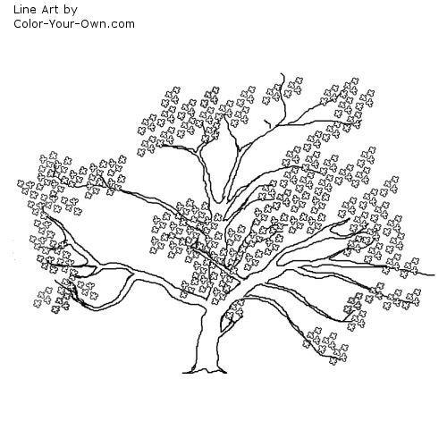 cherry blossom tree coloring pages cherry blossom tree coloring
