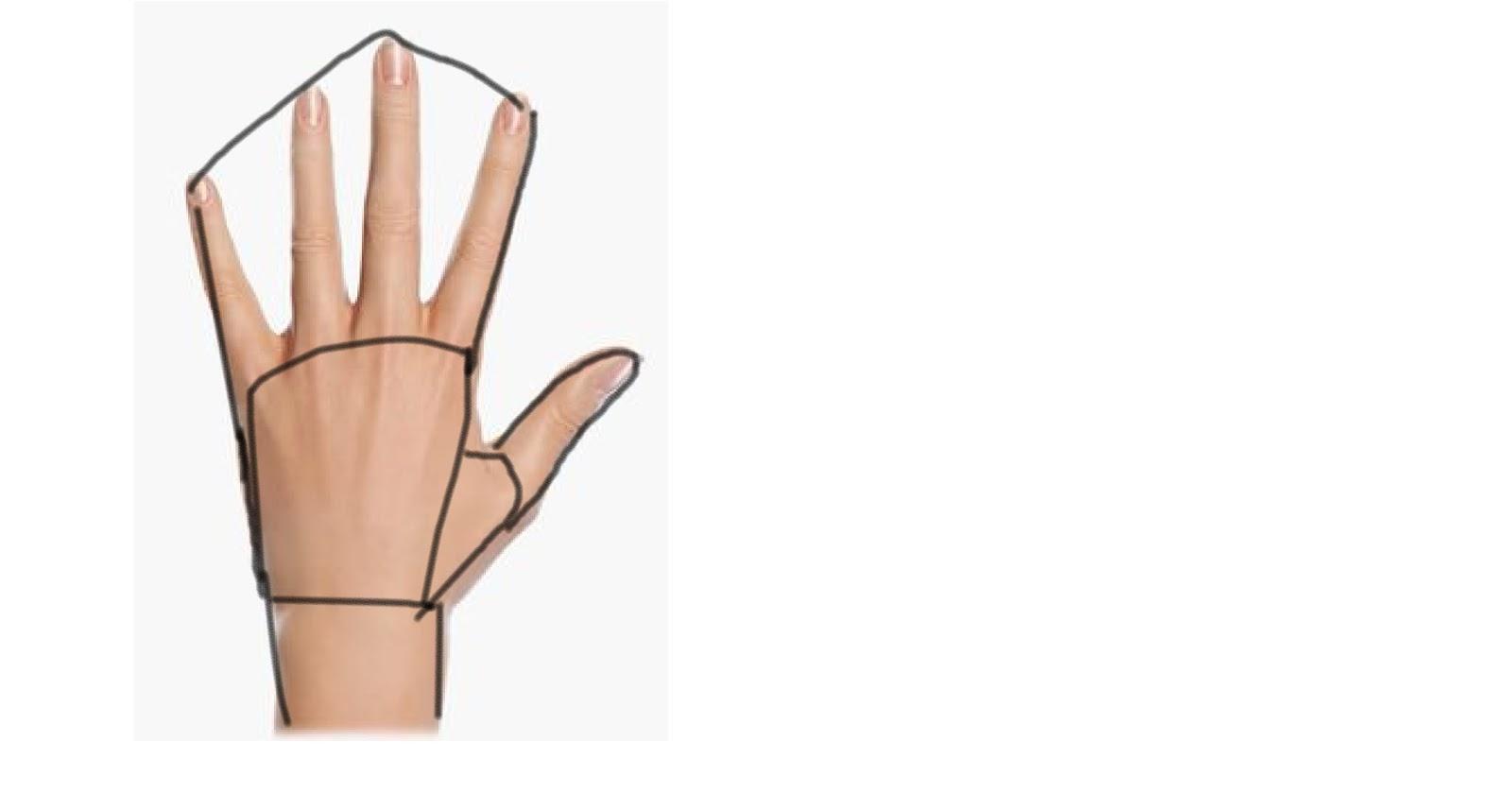 kalian bisa lihat kalau di buat pola tangan akan berbentuk seperti di atas