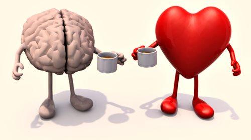 inteligencias-emocional-y-racional.jpg