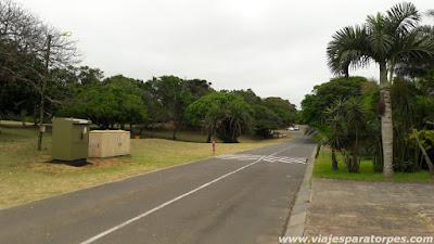 Viaje a Sudáfrica, 3º parte. Santa Lucía y alrededores