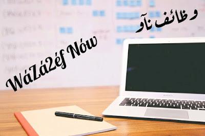 وظائف شاغرة اليوم للمحاسبين في مصر والسعودية | وظائف ناو