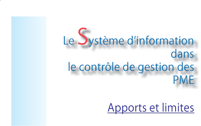 Le système d'information dans le contrôle de gestion des PME