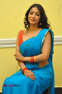 Telugu Actress Vaibhavi Stills in Blue Saree at Www.Meena Bazaar Movie Opening  0078.JPG