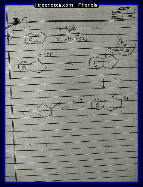 Phenol 3