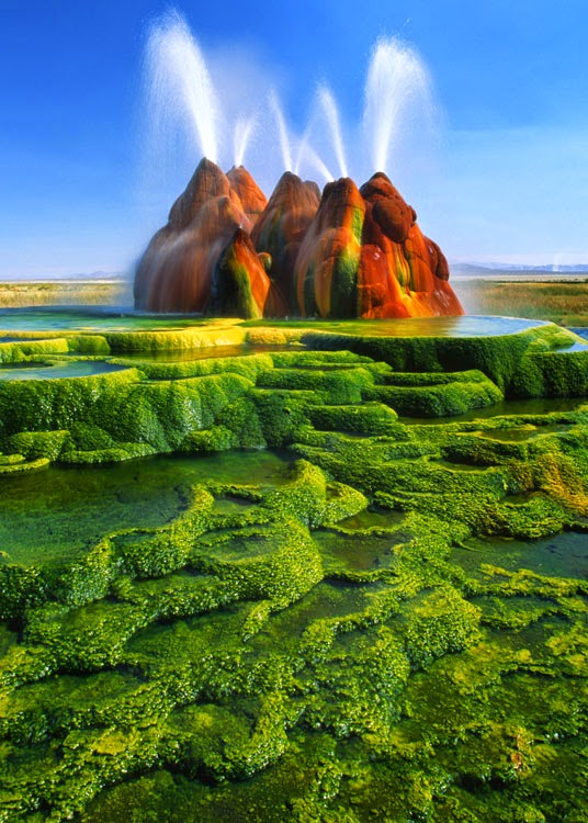 "Fly Geyser, Nevada This geyser is said to have been ""accidentally"" created as a result of well drillings which took place nearby in the mid-Sixties, which caused the build-up and eruption of dissolved minerals. Its colours come from thermophilic algae which thrive in high temperatures."