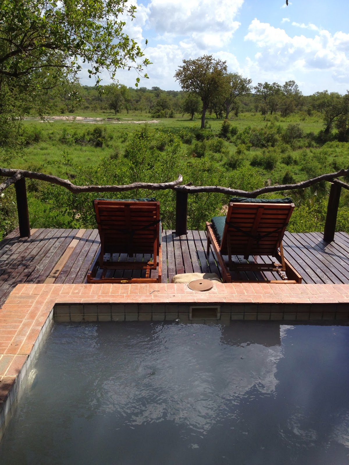 Sabi Sands - Our view of the watering hole from our plunge pool