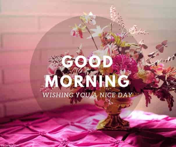 wishing you a nice day good morning