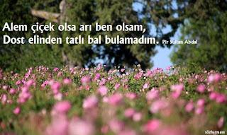 pir sultan abdal sözleri, pir sultan abdal sözleri facebook, pir sultan abdal türkü sözleri, pir sultan abdal türkü, pir sultan abdal şiirleri, pir sultan abdal şiirleri kısa, özlü ve kısa sözler