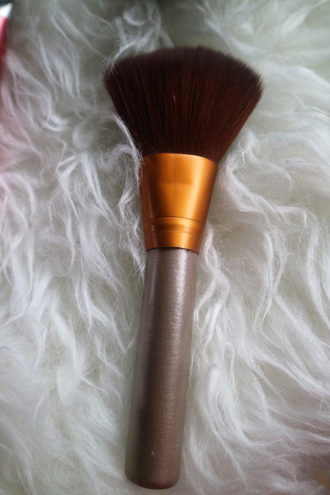 Five Make Up Skin Care Essential That I Cant Live Without Sensatia Botanicals Facial C Serum Jasmine Blossom 60 Ml And Whats Foundation Powder Any Brush