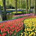 10 Tempat Wisata di Belanda yang Wajib Dikunjungi