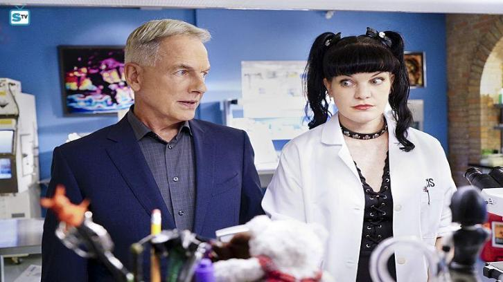 NCIS - Episode 14.03 - Privileged Information - Promo, Promotional Photos & Press Release