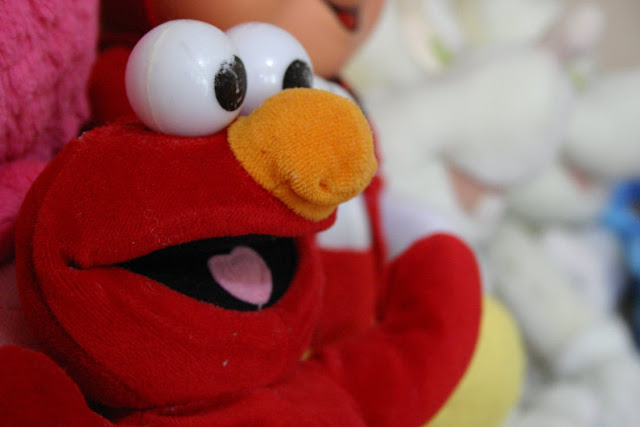 Image: Elmo, by Richarles Moral on Pexels