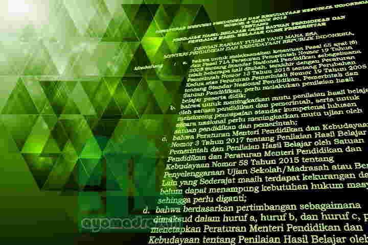 Image Result For Download Pasal Permendikbud No