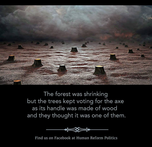 Picture of endless landscape of tree trunks of chopped down trees.  Caption:  The forest was shrinking, but the trees kept voting for the ax, as its handle was made of wood and they thought it was one of them.